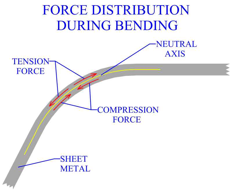 Force Distribution During Bending